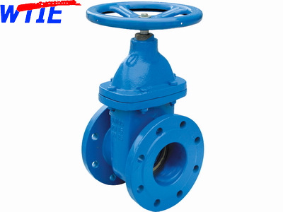 DIN-F4 Metal seated gate valve