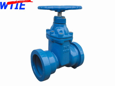 Resilient seated gate valve with socket for DI Pipe