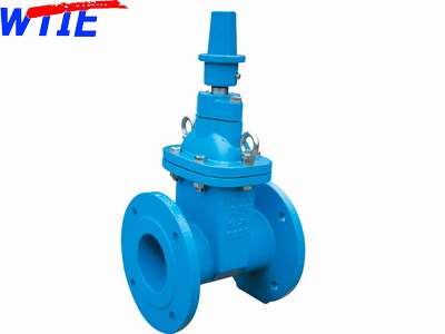Taiwanese standard resilient seated gate valve
